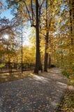 Parkstegen van stad op een warme de herfstdag stock foto's