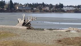 Parksville beach Stock Photos