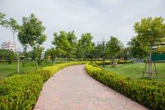 Parkt Thailand Stockbilder