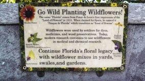 Parkteken van de Algemene Bloem van Wildflowers, Spaanse Naald, Tickweed stock fotografie
