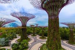 Parktuinen door de Baai - Singapore Stock Foto