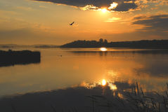 parku na wschód słońca Zdjęcia Royalty Free