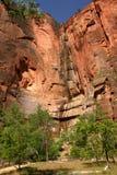 parku narodowego śladu zion Fotografia Royalty Free