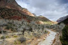 parku narodowego Utah dziewice zion rzeki Zdjęcia Stock