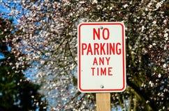 Parkverbotsschild mit Kirschblüte im Hintergrund Stockfotos