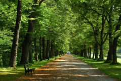 Parkway. In Nymphenberg castle in Germany - Munchen stock photos
