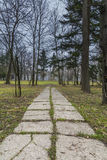 Parkway in early spring in a park Royalty Free Stock Image