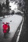 Parkweg met een rode fiets royalty-vrije stock fotografie