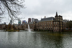 parlament дворца binnenhof голландское Стоковые Фото