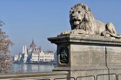 Parlament und Hängebrücke, Budapest Stockfotos