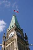 parlament wieży Fotografia Stock
