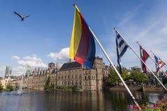 ParlamentNederländerna och flaggor Haag Arkivbilder