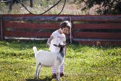 Parlando con capra Fotografia Stock Libera da Diritti
