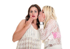 Parler heureux d'amies du bavardage deux de société jeune Photo stock
