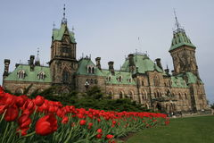 Parliamen Building and Tulips Royalty Free Stock Photo