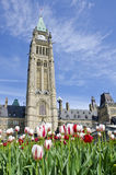 Parliament Building Ottawa and Tulips #1 Stock Images