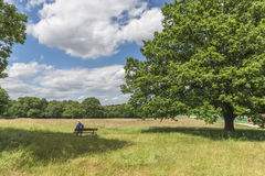 Parliament Hill in Hampstead Heath, London, UK Stock Images