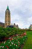Parliament Hill Ottawa Royalty Free Stock Photos