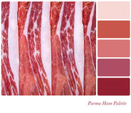 Parma ham palette Royalty Free Stock Photo