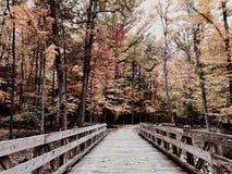 Parma, Ohio heeft een nieuwe die park en een brug door Cleveland MetroParks - PARMA in werking wordt gesteld - OHIO stock afbeeldingen