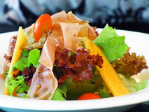 Parmaschinkensalat Stockfoto