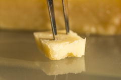 Parmesan slice Royalty Free Stock Photos
