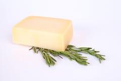 Parmesankäseparmesankäse mit Rosmarin Lizenzfreie Stockbilder