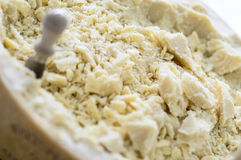 Parmesano italiano Imagen de archivo libre de regalías