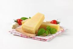 Parmezański ser i jarzynowy garnirunek fotografia royalty free