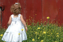 Parmi des fleurs Image libre de droits