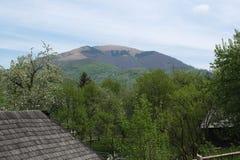 Parmi les montagnes photo libre de droits