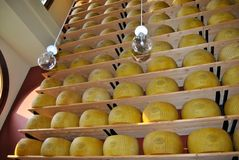 Parmiggiano Obrazy Royalty Free
