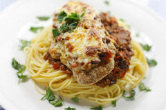 Free Parmigiana Meal Stock Image - 13594021