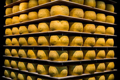 Parmigiano-Reggiano or Parmesan cheese of Parma, in Emilia-Romag Royalty Free Stock Images