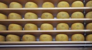 Parmigiano Reggiano in Reggio, Italy Royalty Free Stock Photography