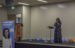 Parmjeet Parmar's Chinese New Year Celebrations royalty free stock images