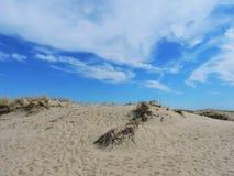 Parnidis dune, Lithuania Royalty Free Stock Photo