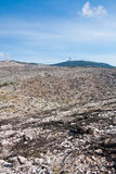 parnitha национального парка Стоковое фото RF