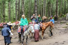Paro,不丹- 2016年9月18日:马的游人往Taktshang Palphug修道院(老虎的巢),不丹 库存照片