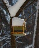 Paro cerca del alimentador en un parque del invierno Imágenes de archivo libres de regalías