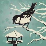 Paro que se sienta en una rama cerca del alimentador en invierno libre illustration