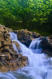 Parod River Israel. Flowing water the Parod river in the Galilee, Israel Stock Image