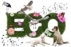Parola con l'animale, concetto di Eco 3d di eco Fotografia Stock