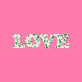 Parola di amore fatta della camomilla o di Daisy Flowers And Leaves Vettore Immagini Stock