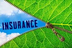 Parola di assicurazione sotto la foglia della chiusura lampo fotografie stock libere da diritti