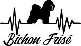 Parola di battito cardiaco di Bichon Frise Fotografia Stock Libera da Diritti