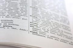 parola ?di saggezza? in dizionario inglese-spagnolo Fotografia Stock Libera da Diritti