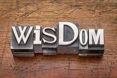 Parola di saggezza nel tipo del metallo Fotografia Stock Libera da Diritti
