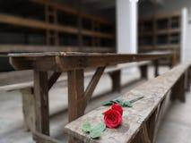 Parole di Whitout Campo di concentramento di Terexzin fotografia stock libera da diritti