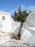 paros νησιών της Ελλάδας Στοκ Φωτογραφίες